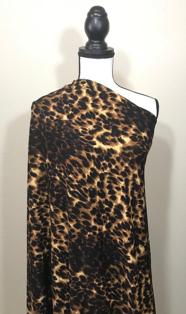 Image of Cheetah Liverpool