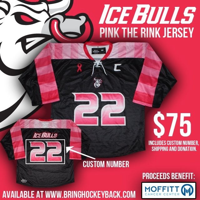 Image of USF Pink The Rink Jersey