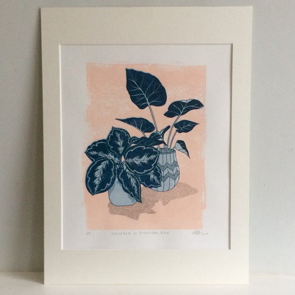 Image of CALATHEA Prussian Blue Screenprint