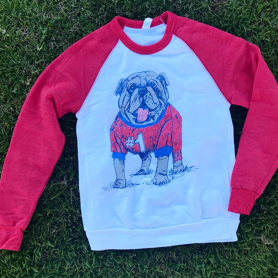 Image of Adult Jersey Dog Sweatshirt with RED sleeves