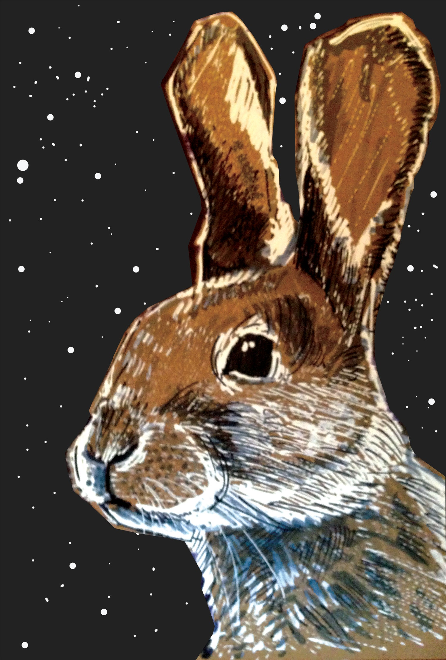 Image of Hare At Night Art Print Signed