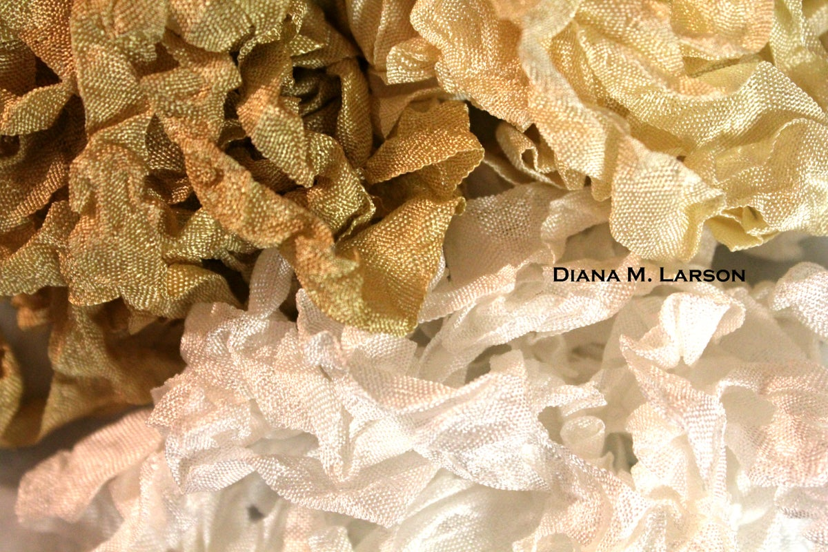Image of Creamy Dreamy Bundle, crinkle Ribbon