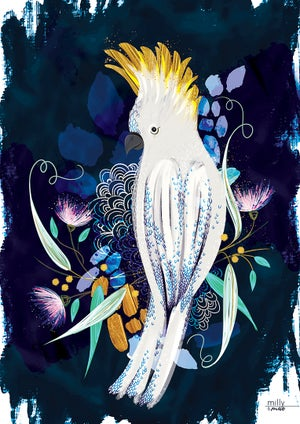 Image of Cockatoo - Art Print