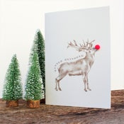 Image of Hand Drawn Christmas Card 6 Pack