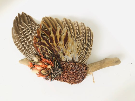 Image of Pheasant smudge wing