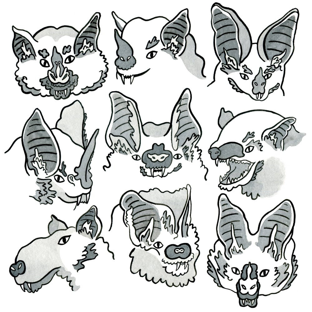 Image of Bats B&W