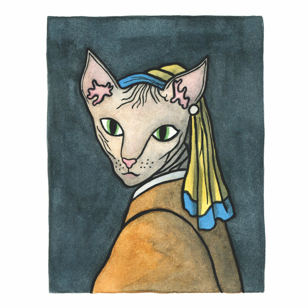 Image of Hairless Cat with the Pearl Earring