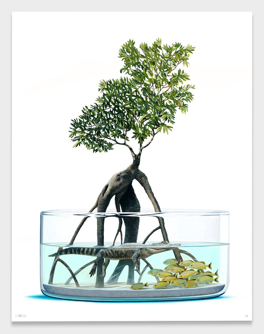 "Image of ""Grove"" Print"