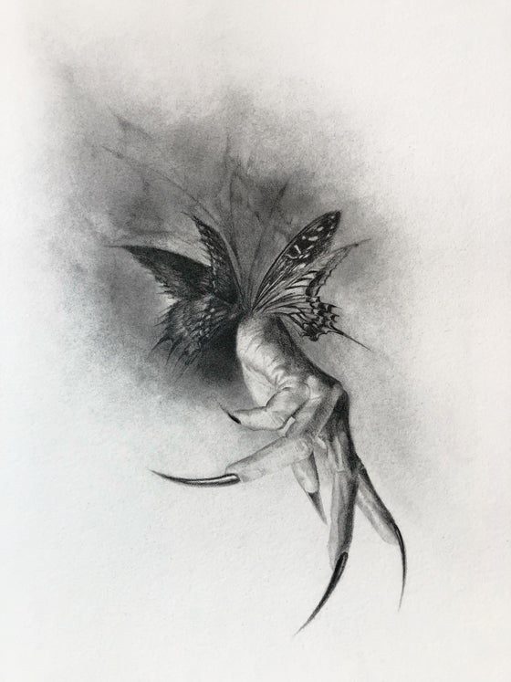 Image of Butterfly's Ashes