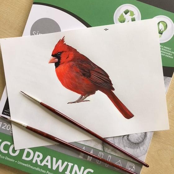 Image of Cardinal ~ Wall decal