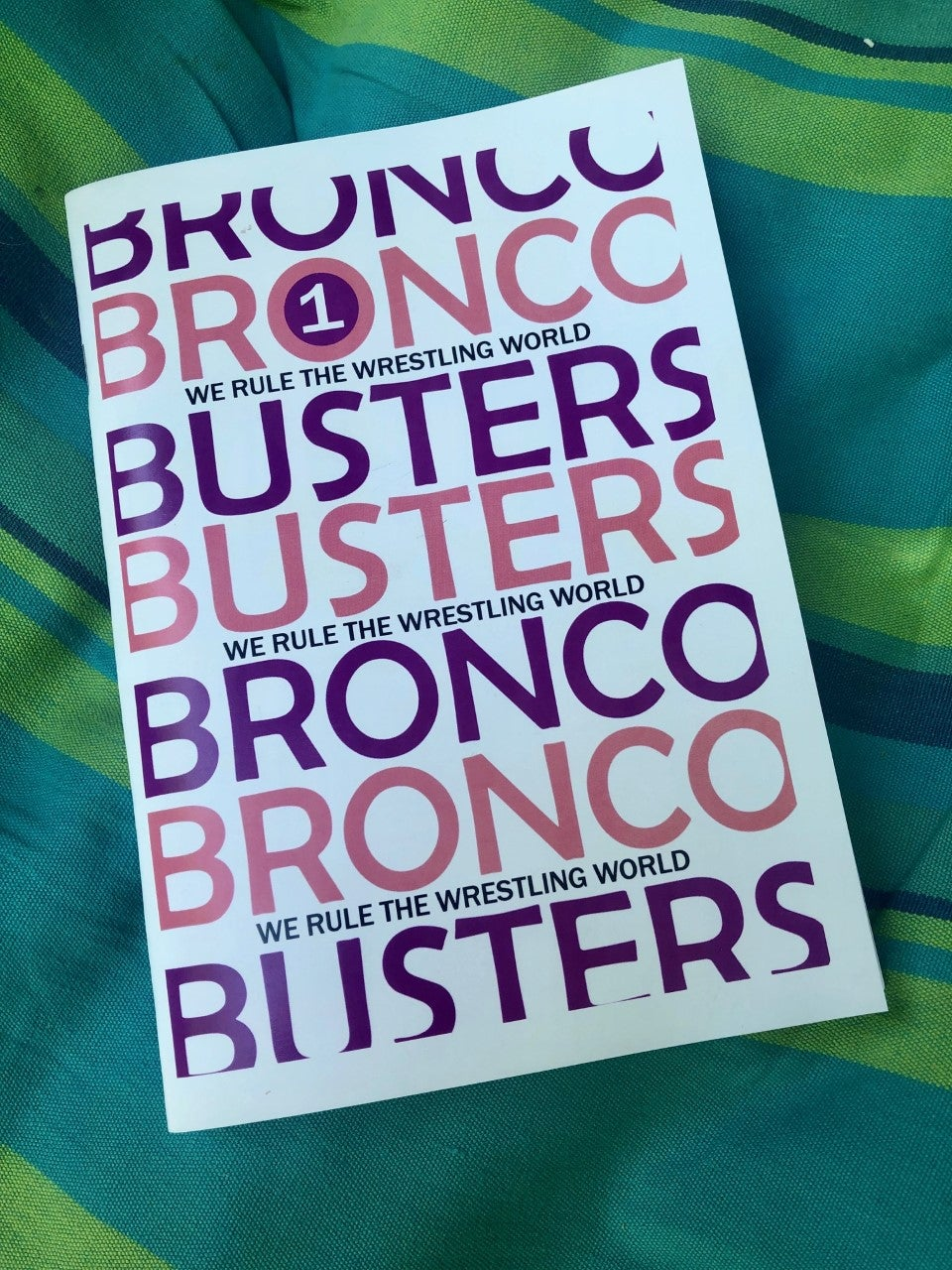 Image of Bronco Busters Zine: Volume 1