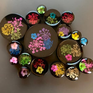 "Image of Real Pressed Flower Plugs On Black (Sizes 0g-2"")"