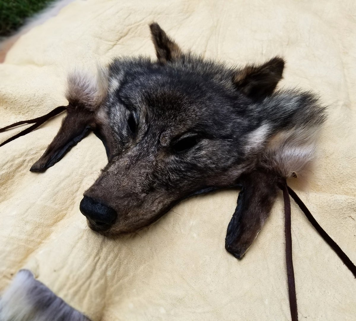 Image of Wolf Headdress