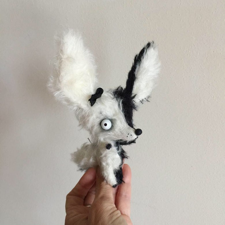 Image of Pierrot the Fennec Fox