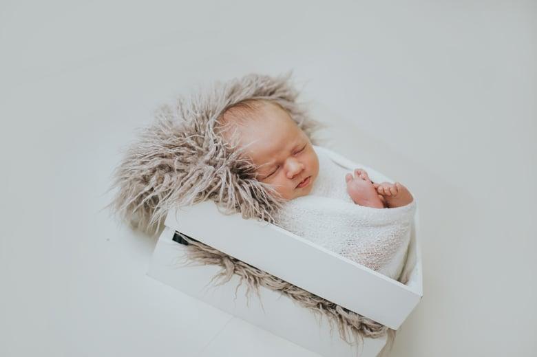 Image of In Studio Newborn Session