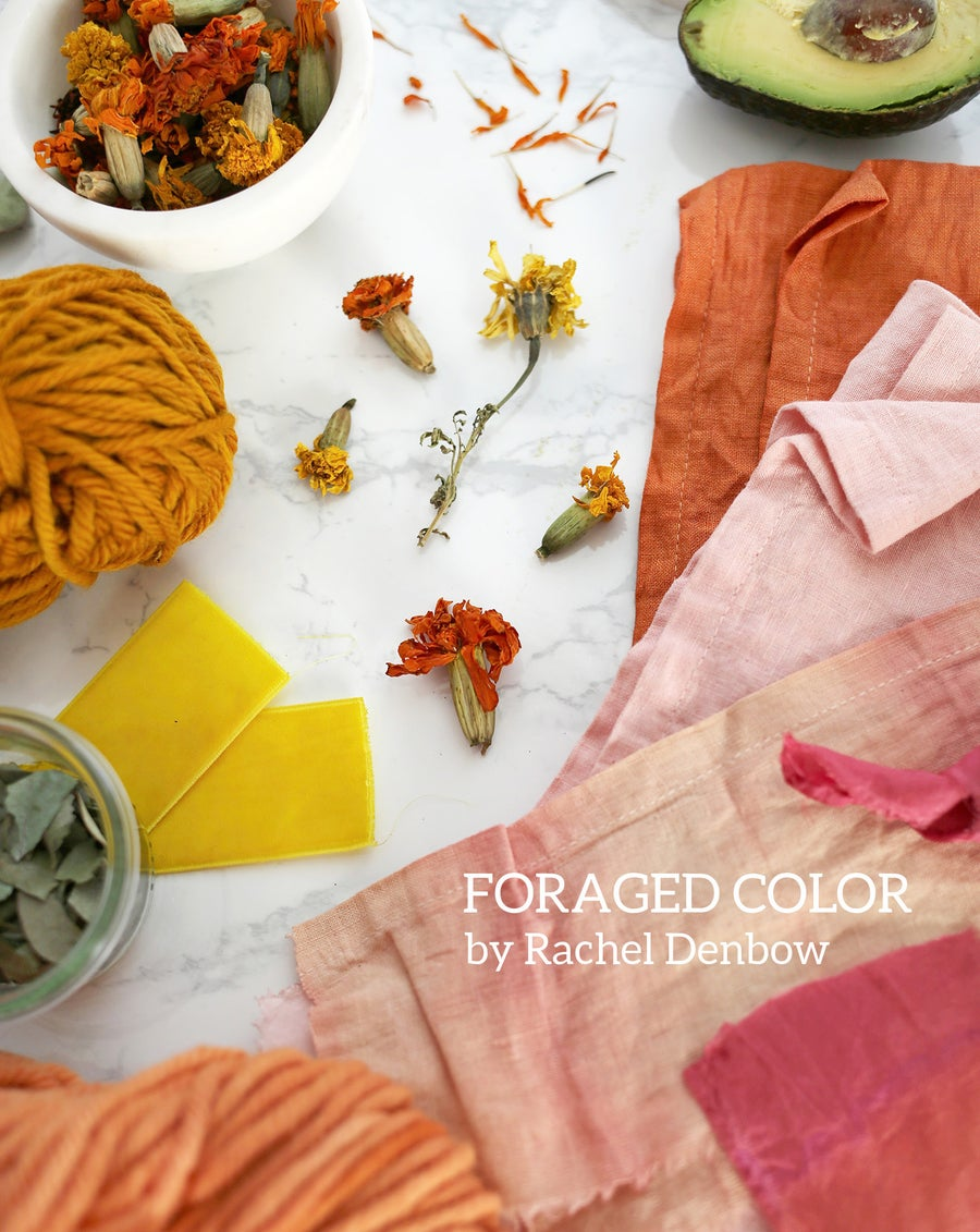 Image of Foraged Color: Dyeing with Plants e-Course