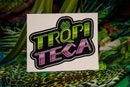 Image 2 of TRQPITECA LOGO STICKER