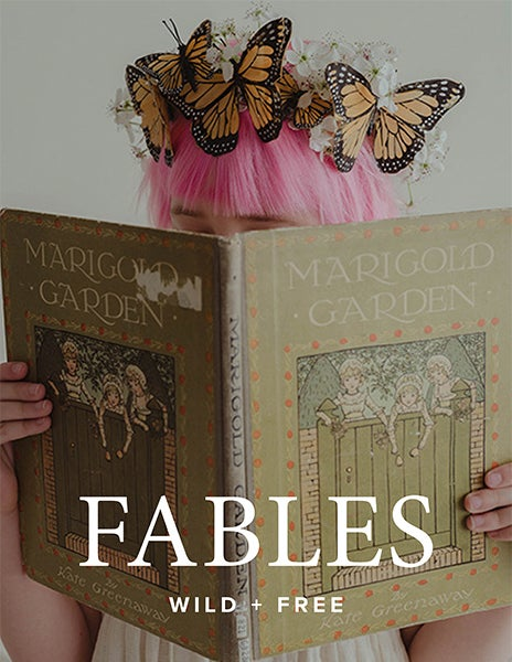 Image of FABLES Content Bundle