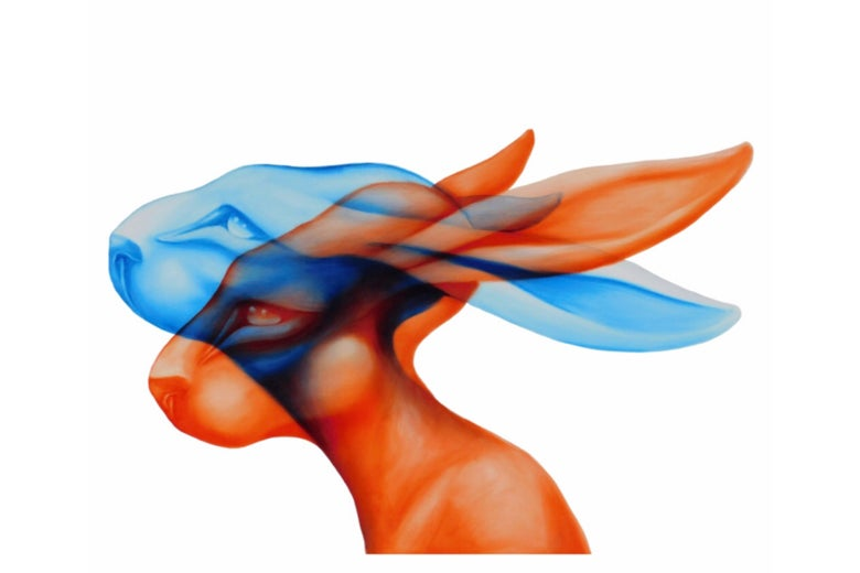 Image of 3D Rabbit Poster Print