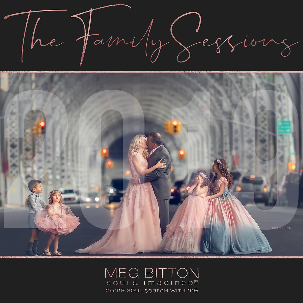 Image of The Family Sessions II