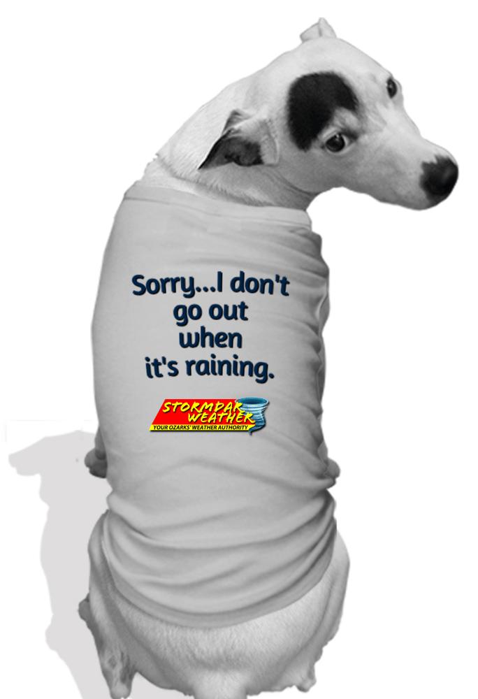 Image of Stormdar Doggie Shirt