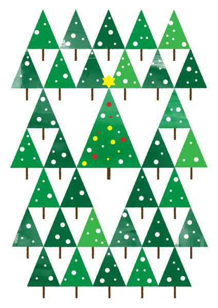 Image of All the trees of Christmas
