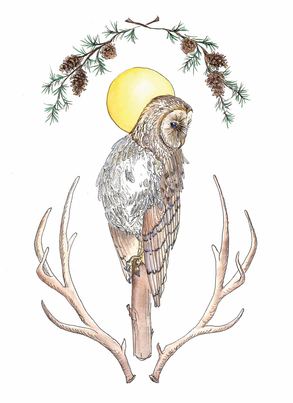 Image of Owl greeting cards, set of 5