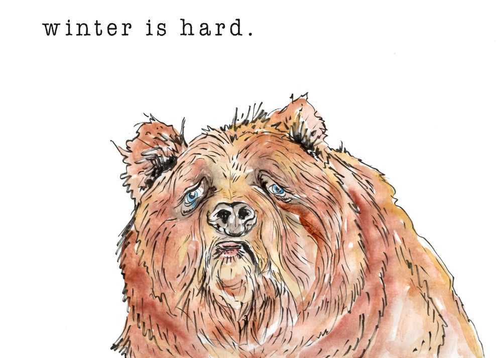 Image of Sad Bear greeting cards, set of 5.