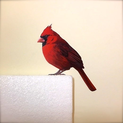 Image of *CURRENTLY PRE-ORDER ONLY* ITEM WILL BE SHIPPED 7th January 2019* Wolsey Cardinal ~ Wall decal