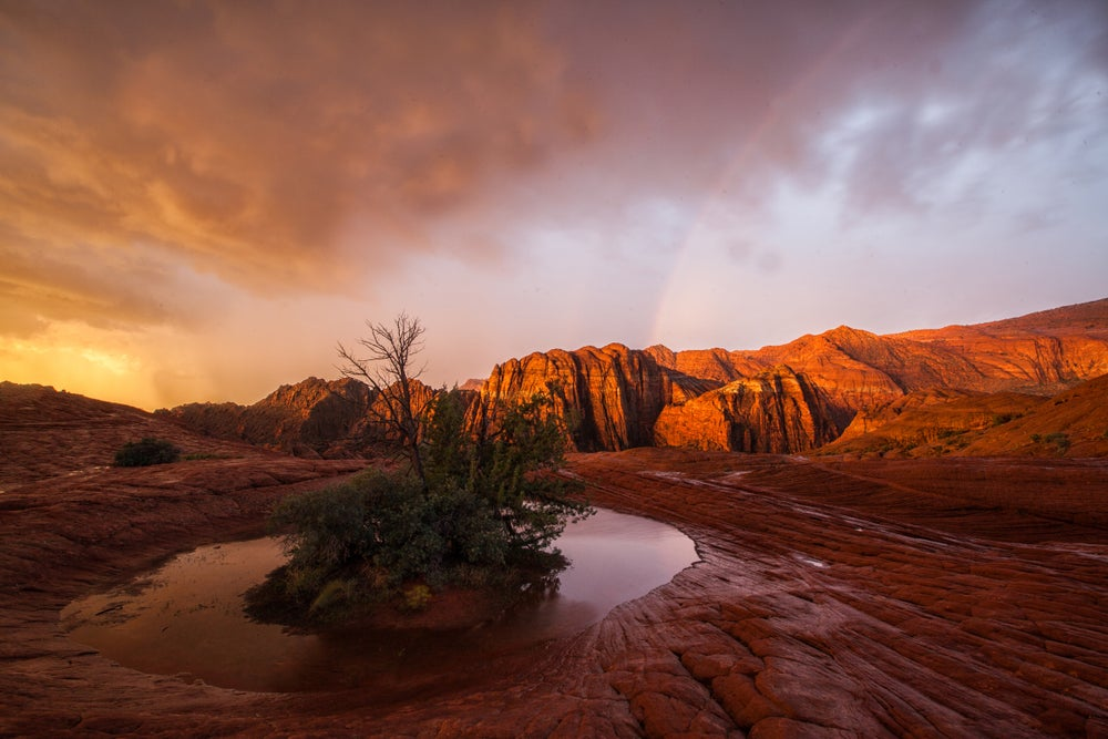 Image of Snow Canyon Epic