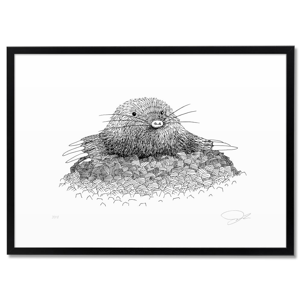 Image of Print: Mole