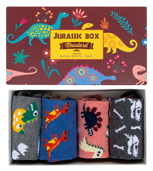 Image of Dinosaur Socks Box