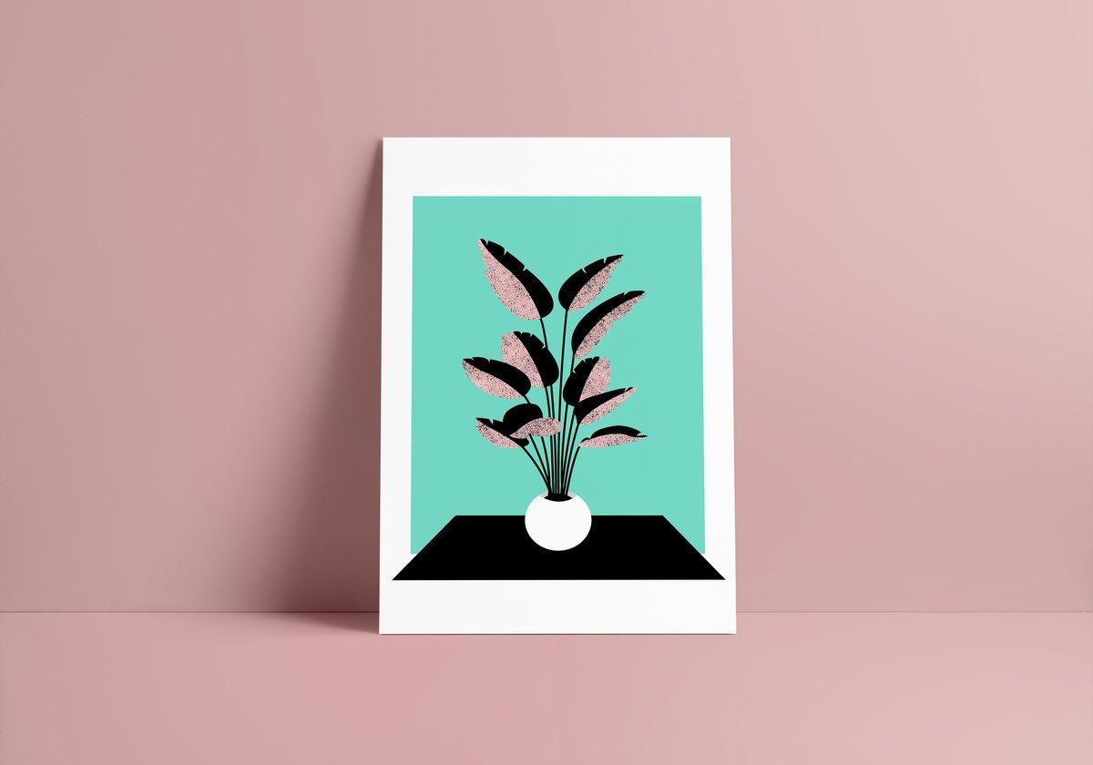 Image of Musa acuminata