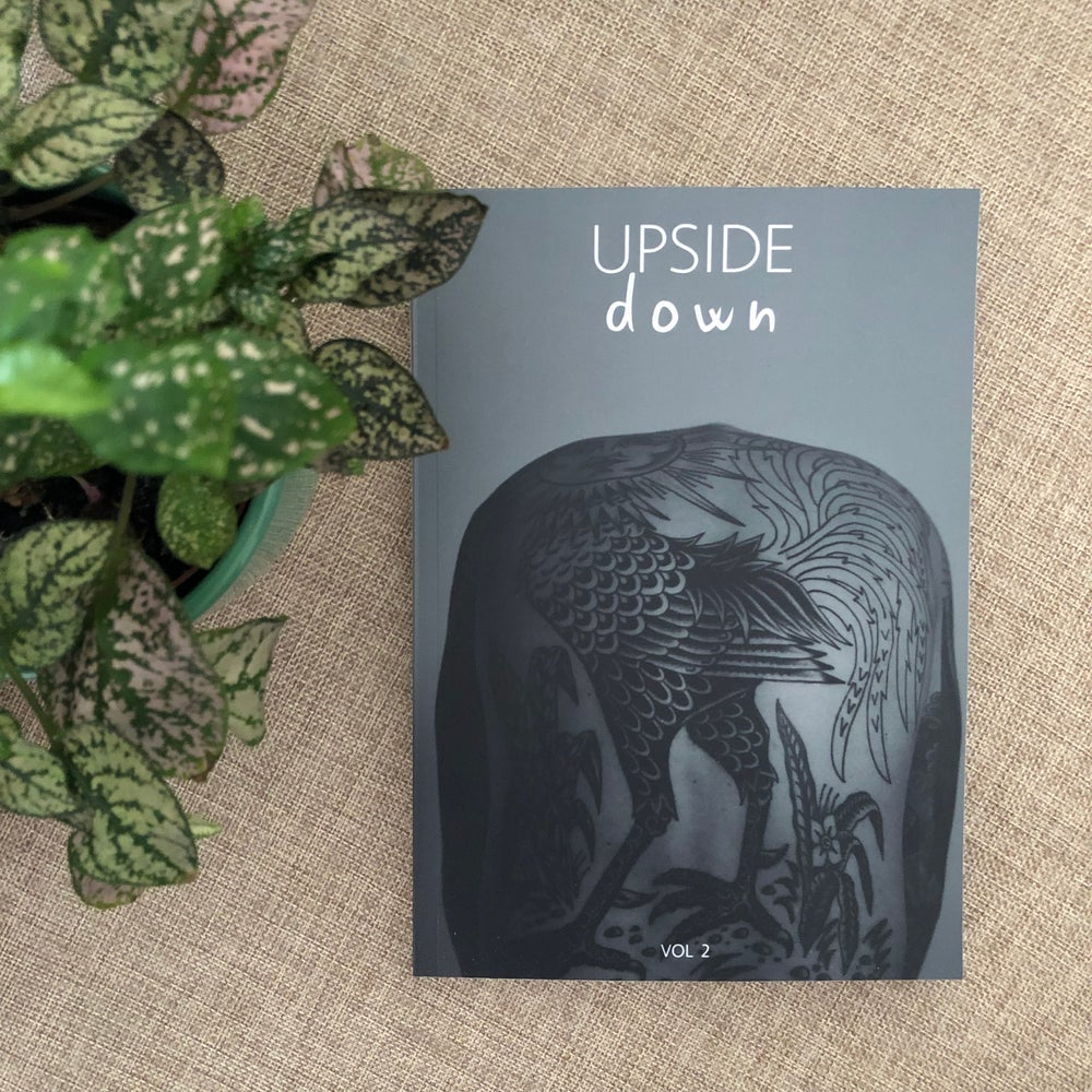 Image of Upside Down Vol. 2 - WITH TRACKING