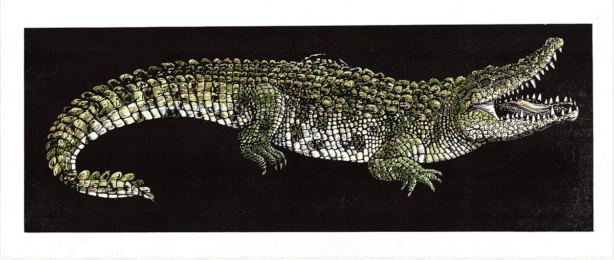Image of Hand colored Saltwater Crocodile woodblock print