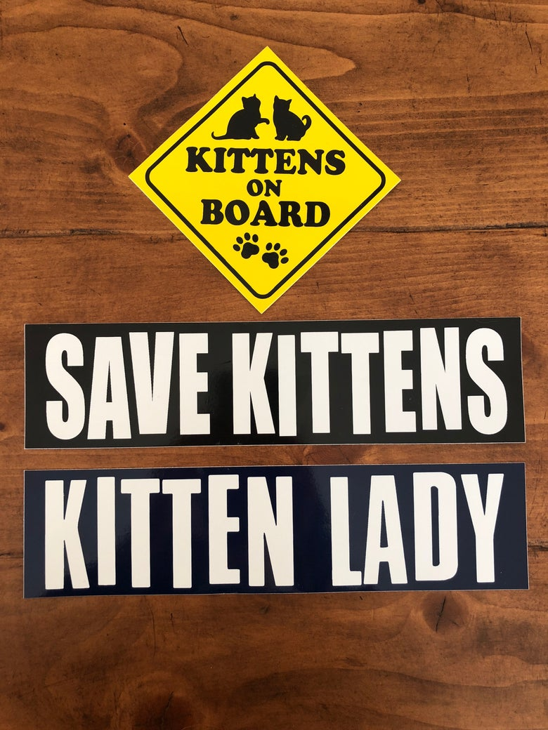 Image of Kittens On Board Sticker Set!