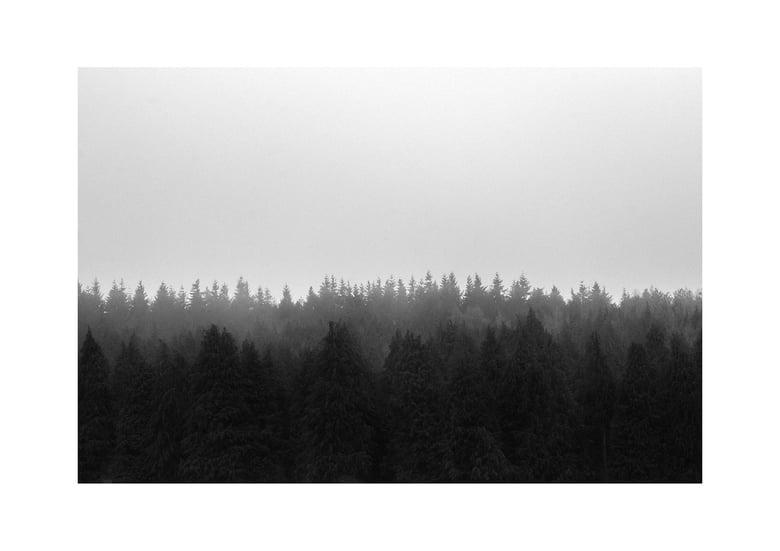 Image of fog
