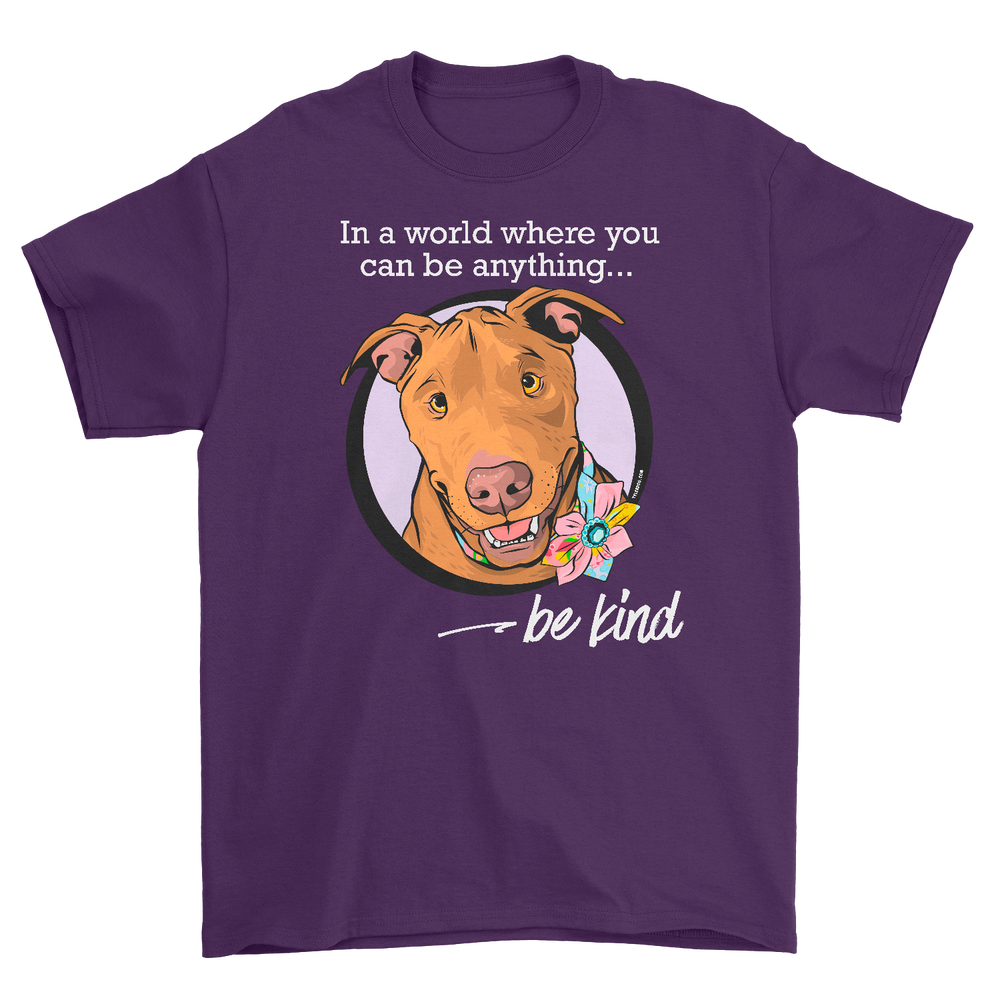 Image of Be Kind t-shirt