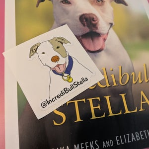 Image of Stelly Stickers
