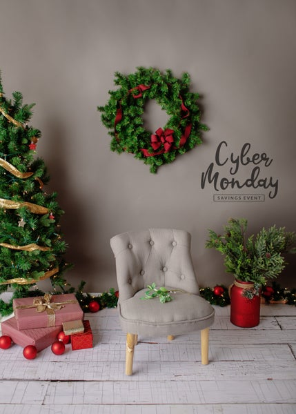 Image of Holiday Mini Session