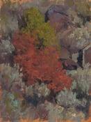 Image of Autumn at John Dunn Bridge