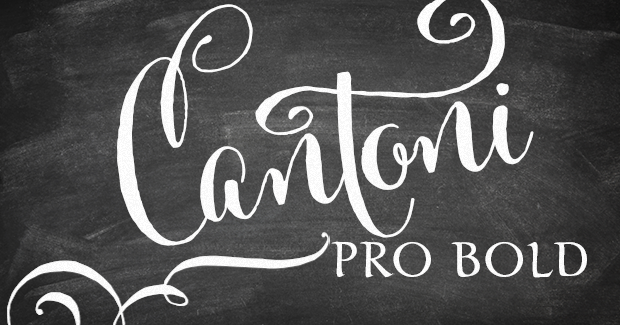 Image of Cantoni Pro Bold Custom License