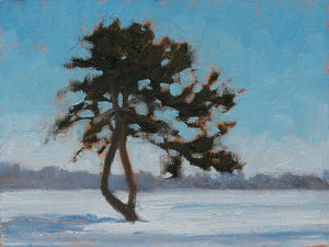 Image of The Lone Pine