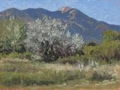 Image of Pueblo Peak