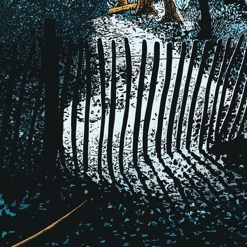 Image of Highgate Wood