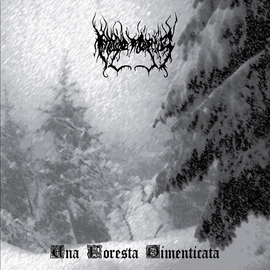 Image of UNA FORESTA DIMENTICATA CD Digipack