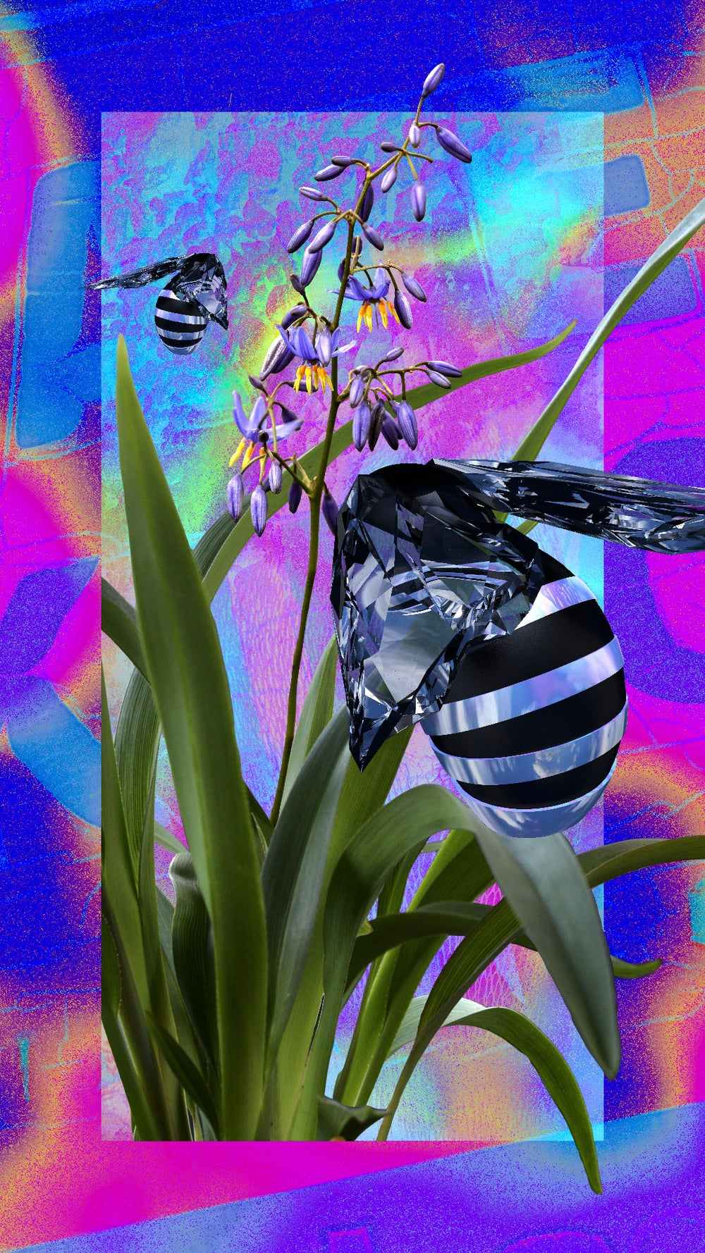 Image of Blue Banded Bee