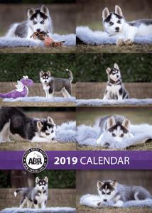 Image of 2019 Calendar