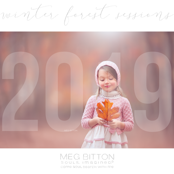 Image of Winter Forest Sessions