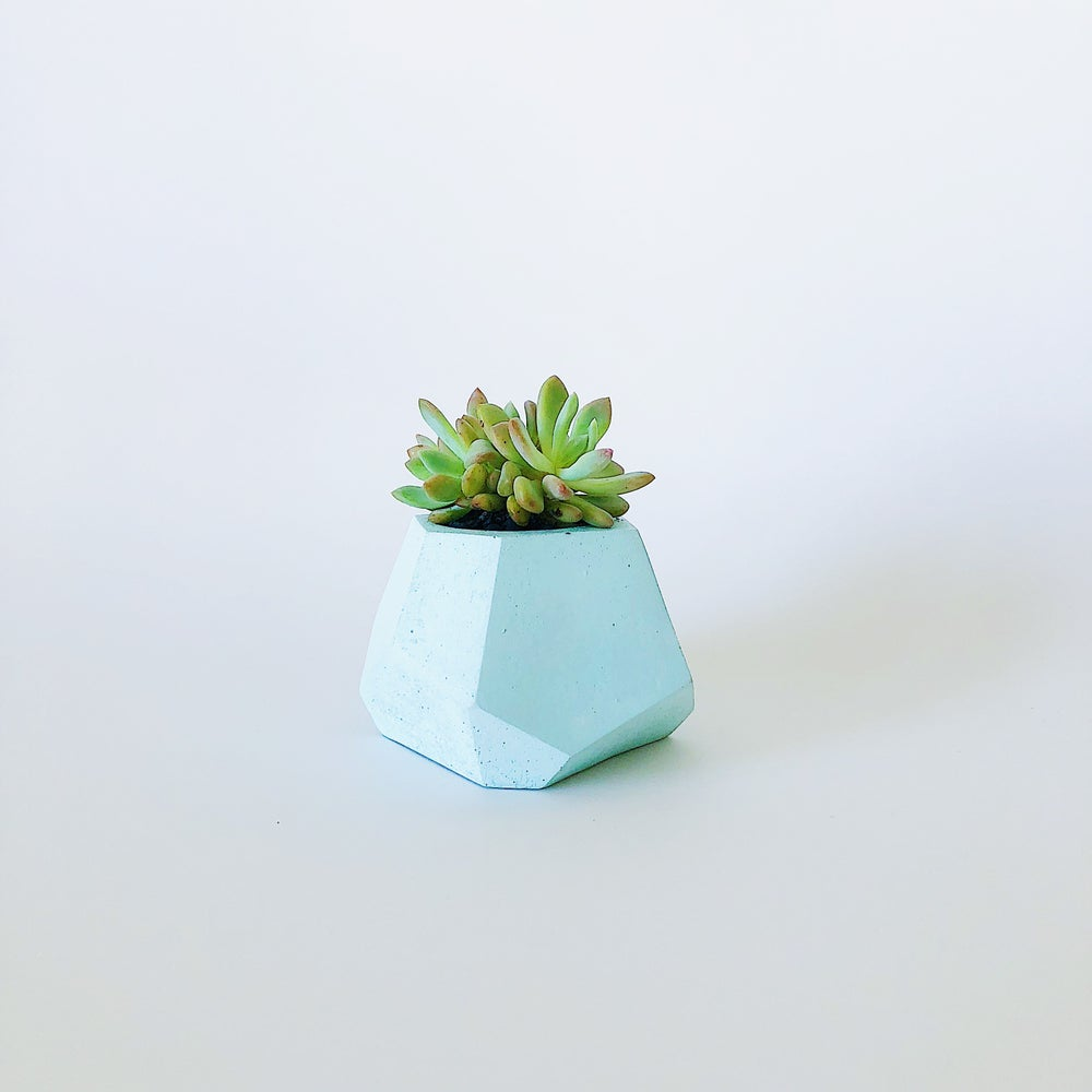Image of Planter - Pebbles [Pastel Mint]